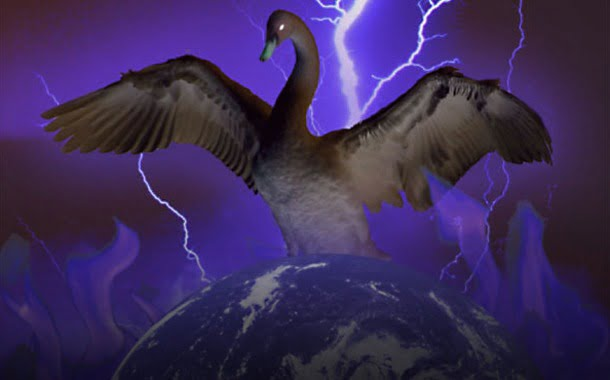 black swan world